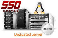 Dedicated Server - Linux SSD Disk 2x110GB