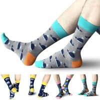 Mens Fashion Socks Knee High Cotton Animals Bird Whale Elephant New Design