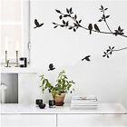 Tree Bird Leaf Walls Paper Decor Removable Art Wall Sticker Mural Decal Vinyl