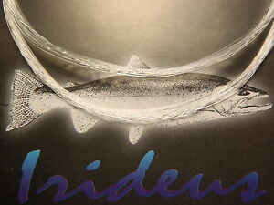10 Irideus 9 ft 2X Fluorotech Knotless Tapered Fly Fishing Line Leaders Trout