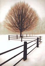 Solitude David Lorenz Winston Photograph Tree Fence Landscape Print Poster 16x20