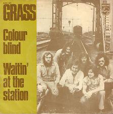 "GRASS - Colour Blind (RARE 1973 NEDERPOP VINYL SINGLE 7"")"