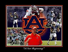 2013 GUS MALZAHN AUBURN UNIVERSITY TIGERS FOOTBALL LIMITED EDITION S/N PRINT