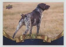 2018 Upper Deck Canine Collection Blue #103 German Wirehaired Pointer Card 0n8
