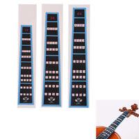 Violin Fingerboard Sticker Fretboard Note Label Finge Chart Practice Accessor ZD
