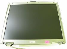 Dell Latitude D600 14.1 SXGA LCD Screen Display Assembly 8J775 F8702 6M871 6M873