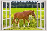Wall Meddow Horse Decal Vinyl Sticker Kids Art Animal Home Animals Room Mural