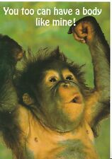 Animals Postcard - Monkey Posing - You Too Can Have A Body Like Mine! - AB3098