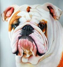 Ritratto portrait di BULL DOG (dog) - Matite colorate cm. 55 x 66