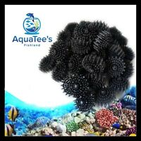 40mm Bio Balls Aquarium Marine Fish Tank Canister Pond Sump Filter Media Aqua