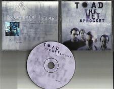 Glen Phillips TOAD THE WET SPROCKET Whatever I fear PROMO DJ CD Single w/ LYRICS