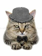 PHOTO COMPOSITION CAT HAT BOW TIE STRIPES FUR FELINE EYES POSTER PRINT BMP10575