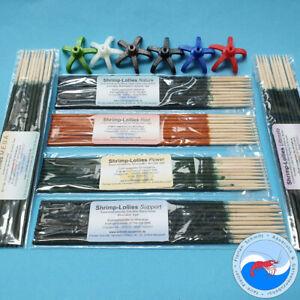 Shrimp-Lollies Auswahl + Halter // 3x10 Stück // Garnelen Futter // *AKTION*