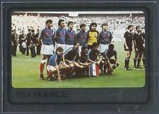 PANINI EURO 2008- #530-FRANCE 1984 TEAM PHOTO-SILVER FOIL