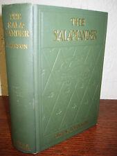 1st/1st Edition SALAMANDER Owen Johnson EVERETT SHINN Illustrated CLASSIC Rare