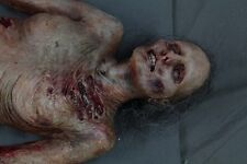 Movie Quality Zombie Body - Halloween Prop Decoration The Walking Dead Corpse