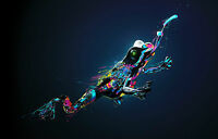 A4 Poster - Multi-Coloured Jumping Frog (Picture Print Animal Reptile Art)