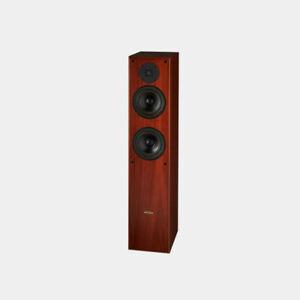 REDGUM RGS Lucens RGS38i Stereo Speaker Home Theatre Audio