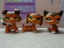 🧡Littlest Pet Shop🧡  DACHSHUND Dog #675  Collie & Short Hair Cat Triplets