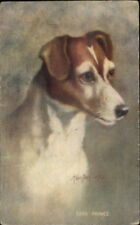 Cute Jack Russell Terrier Dog by Kenyon c1910 Postcard PRINCE