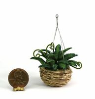 Dollhouse Miniature 1:12 Scale Fern in Hanging Basket Planter