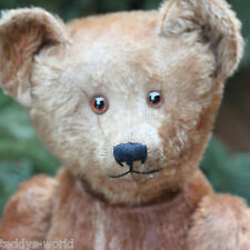 """Adorable Antique Teddy Bear 1910s Hunchback Character Bear Very Rare 25.6"""" Top"""