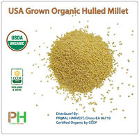 USA Grown Organic Millet, Whole Grain Seeds non GMO Hulled Bulk Raw