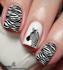 Zebra animal Nail Art Decal sticker water transfer wrap 98