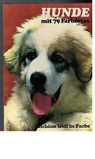 David Gibbon - Hunde mit 79 Farbfotos Ted Smart