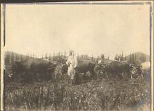 ALGERIE LAGHOUAT PHOTO PRISON DETENUS GARDES PAR SENTINELLE LABOURS JAIL 1904