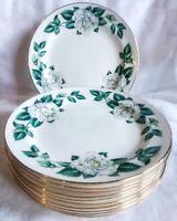 11 Vintage Homer Laughlin Nassau Eggshell Nautilus White Rose Salad Plates USA