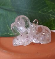 Reiki Clear Satyaloka Azeztulite Carved Polished Dog Puppy Light Healing Crystal