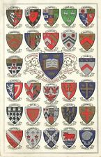 Oxford England~Coats of Arms of the Colleges of Oxford~28 Shields~1907 Postcard