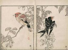 1881 double woodblock prints, Bairei, Birds Flowers, plate 15, Vol 1-3