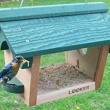 Songbird Bluebird Feeder SE557 Bird Feeder NEW