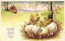 Easter bunny looks at chicks in eggs cue old artist postcard