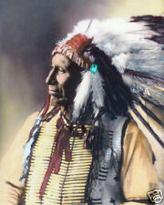 AMERICAN HORSE NATIVE AMERICAN SIOUX INDIAN 1898 8x10 HAND COLOR TINTED PHOTO