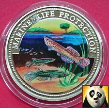 1999 SOMALIA $10 DOLLARO Vita Marina PROTEZIONE COLORATA killfisf Corona Moneta