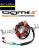 14308 - STATORE MAGNETE PER VOLANO BGM PRO HP V2.5 VESPA 125 PX T5 VNX5T