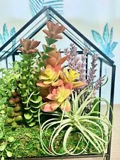 terrarium, terrarium decor, succulent arrangement, floral arrangement, decor