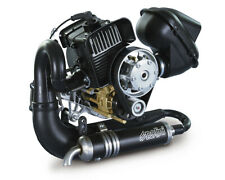 Polini Thor 190 Hf - Centrifugal clutch