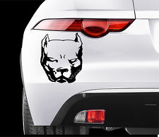 PITBULL DOG Car VINYL STICKERS Bumper Van Window Laptop JDM DECALS