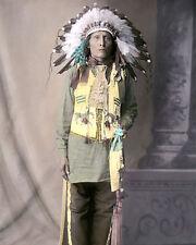 "DAKOTA NATIVE AMERICAN INDIAN ST LOUIS 1904 8x10"" HAND COLOR TINTED PHOTOGRAPH"