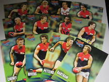 2010 AFL SELECT CHAMPIONS MELBOURNE TEAM SET