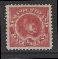 NEWFOUNDLAND 56a 1887 1/2c DEEP ROSE RED DOG VF MPH CV$30+