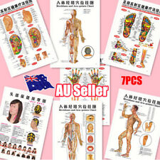 7pcs English Acupuncture Meridian Acupressure Points Posters Chart Wall Map BO