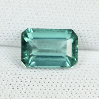 1.60 ct SUPERB LUSTROUS - BLUE GREEN /  NATURAL TOURMALINE OCTAGON - See Vdo !