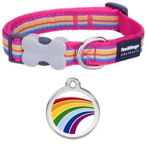 Red Dingo PINK  Stripe Dog / Puppy Collar | RAINBOW Engraved ID Tag | FREE P&P
