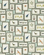 Sanderson Feature Wallpaper Picture Gallery 213400 Aqua Birds Butterflies Frames