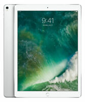 Apple iPad Pro 2nd Gen. 256GB, Wi-Fi + 4G (Unlocked), 12.9 in - Silver